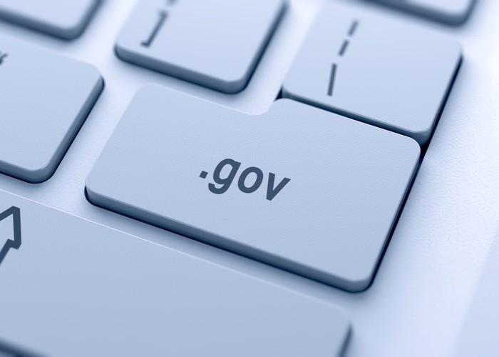 Tethered to a Digital Government