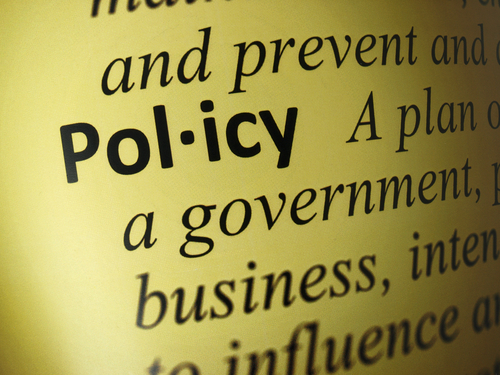 Organizational Policy in Local Government