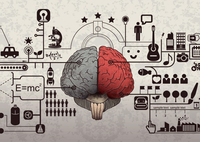 Mindfulness: Understand Your Brain for Better Productivity