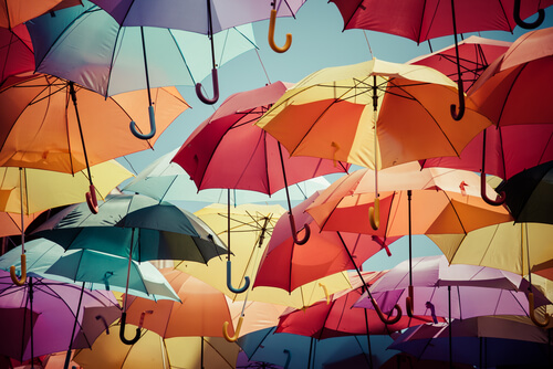 Is an Umbrella Career Right for You?