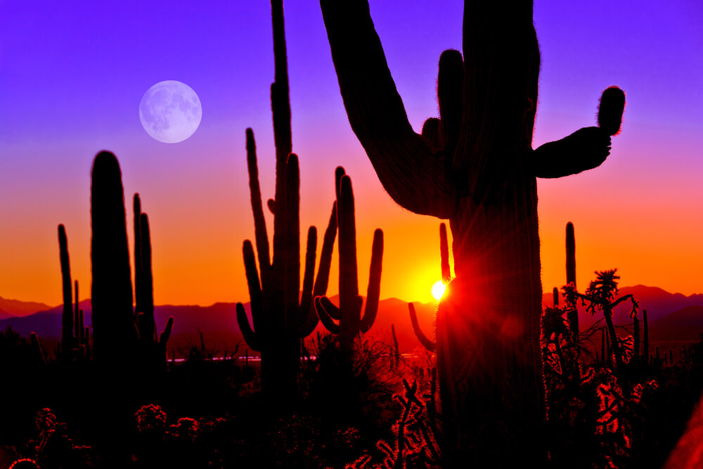 Scottsdale, Arizona Is Becoming a Hotspot for Jobs