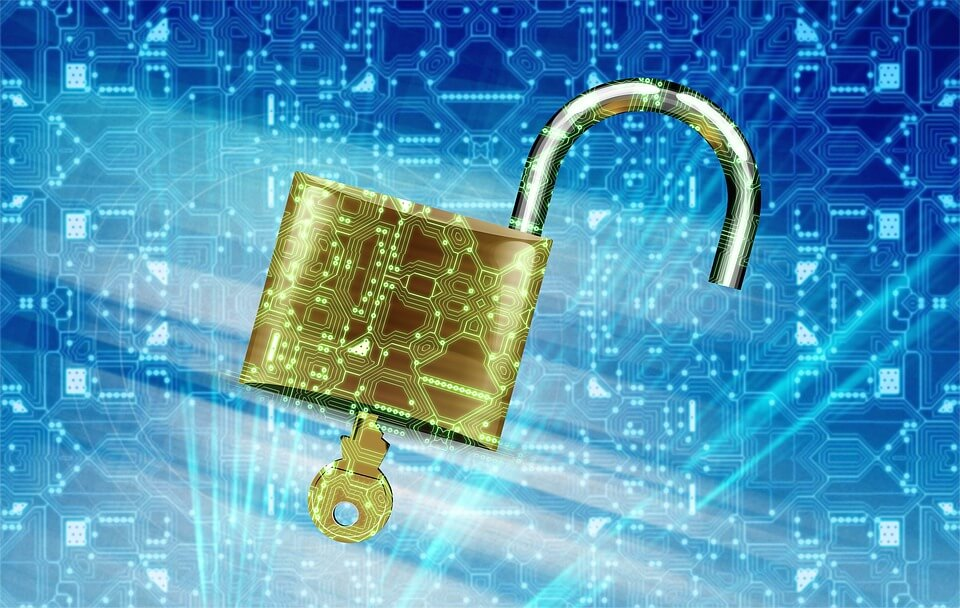 The Importance of Data Protection in a Government Career